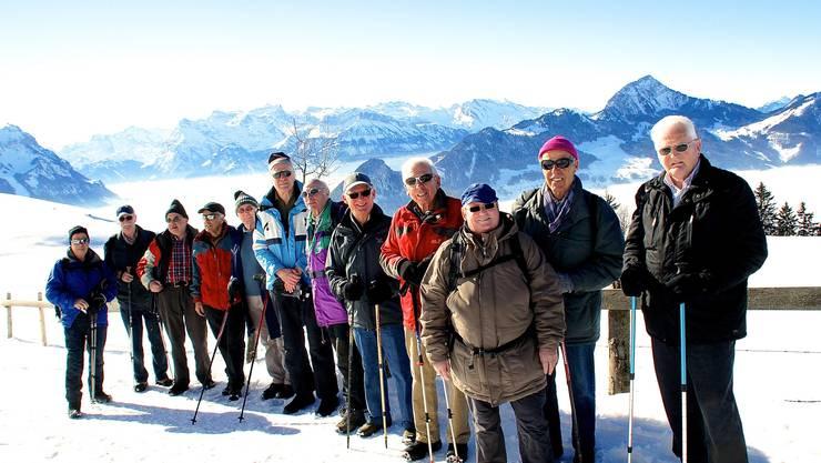 Die Wandergruppe der Männerriege STV - Schlieren im Hintergrund die Zentralschweizer - Alpen