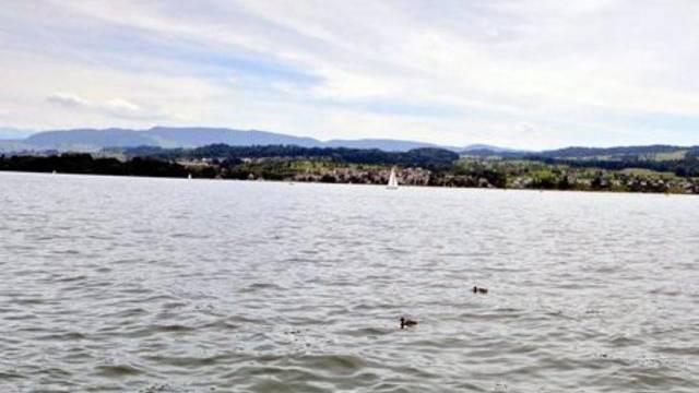 Zürichsee (Symbolbild)