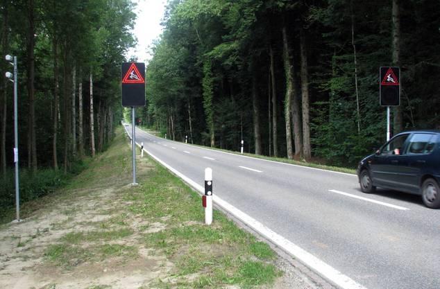 Die Wildwarnanlage soll Automobilisten von Wildtieren warnen.