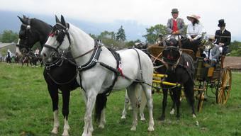 Vierspänner am Tag des Pferdes 2003 in Solothurn