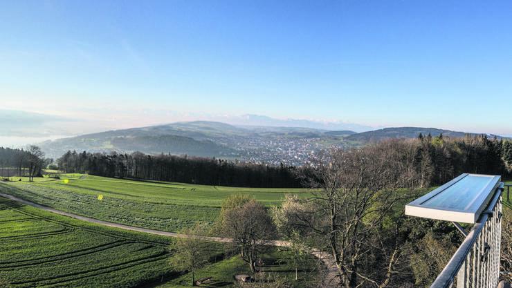 Fantastischer Weitblick vom Hombergturm.