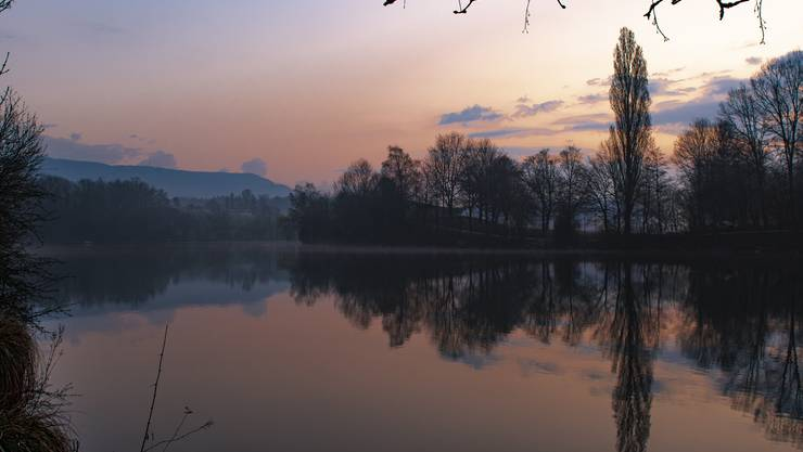 Morgenstimmung an der Aare bei Feldbrunnen