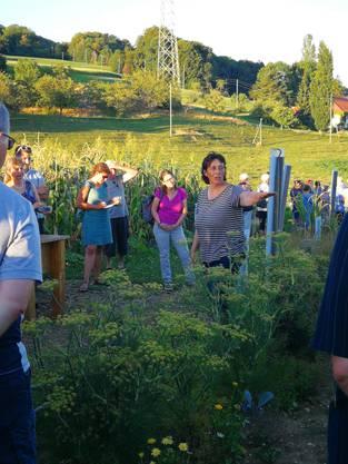 Die Besucher erhalten spannende Einblicke in die Ackerkulturen