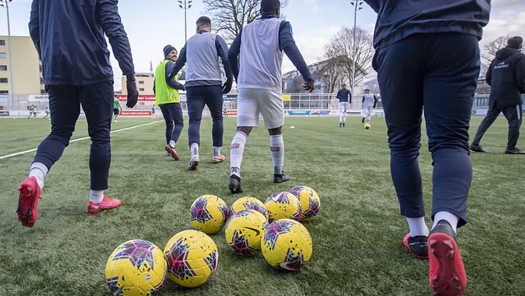 Die Spieler des FC Zürich erhalten in Bälde einen neuen Teamkollegen