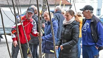 Mit 3000 Franken bereitete der Oensinger Verein den Baumfreunden viel Freude.