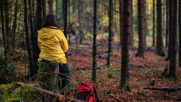 Beim Waldbaden taucht man vollständig in den Wald ein und versucht mit verschiedenen Methoden, zu entspannen und abzuschalten.