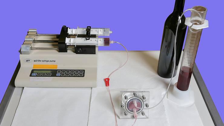 Traubensaft fliesst durch die feinen Kanälchen auf einem Kunststoff-Chip, vorbei an Weinhefen, die den Zucker in Alkohol umwandeln.