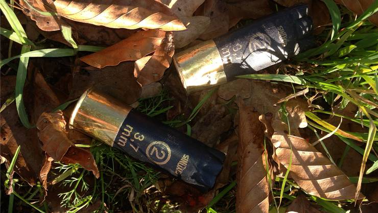 Ein Jäger liess diese Patronenhülsen im Kaister Wald liegen. SH