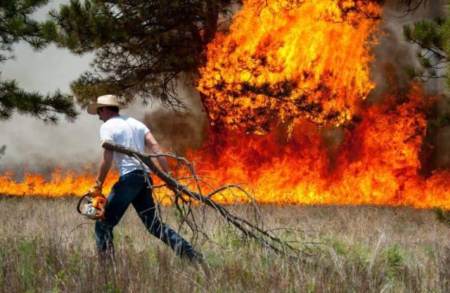 Buschbrand im Nordosten von Colorado Springs