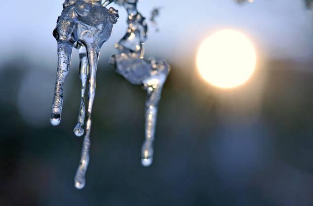 Im Februar Schnee und Eis, macht den Sommer heiß