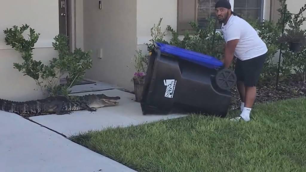 Mann in Florida fängt Alligator mit Mülltonne ein
