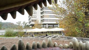 Um in den Verhandlungen mit dem Kanton etwas herauszuholen, muss die Psychiatrie Baselland – wie der Kletterdrache auf dem Spielplatz – wohl Zähne zeigen. (Archiv)