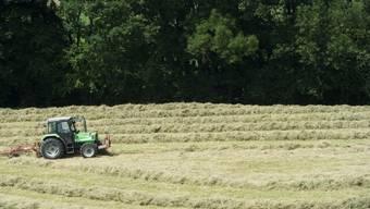 Mehrere sonnige Tage hintereinander und hohe Temperaturen ermöglichten vielen Bauern ihr Heu ins Trockene zu bringen. (Archivbild).