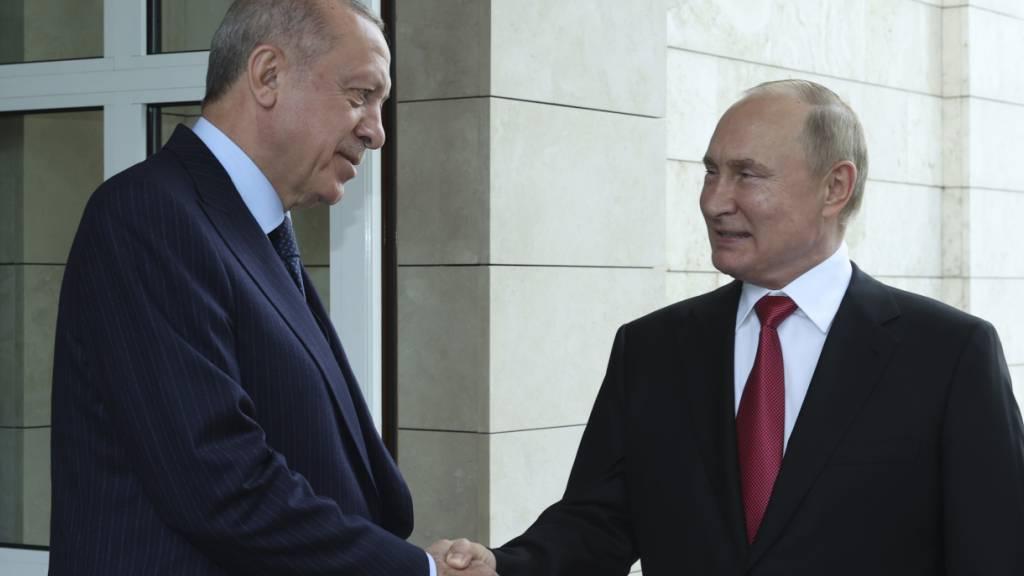 Wladimir Putin (r), Präsident von Russland, und Recep Tayyip Erdogan, Präsident der Türkei, sprechen miteinander, bevor Erdogan nach ihrem Treffen die Staatsresidenz Bocharov Ruchey verlässt. Foto: -/Turkish Presidency/AP/dpa