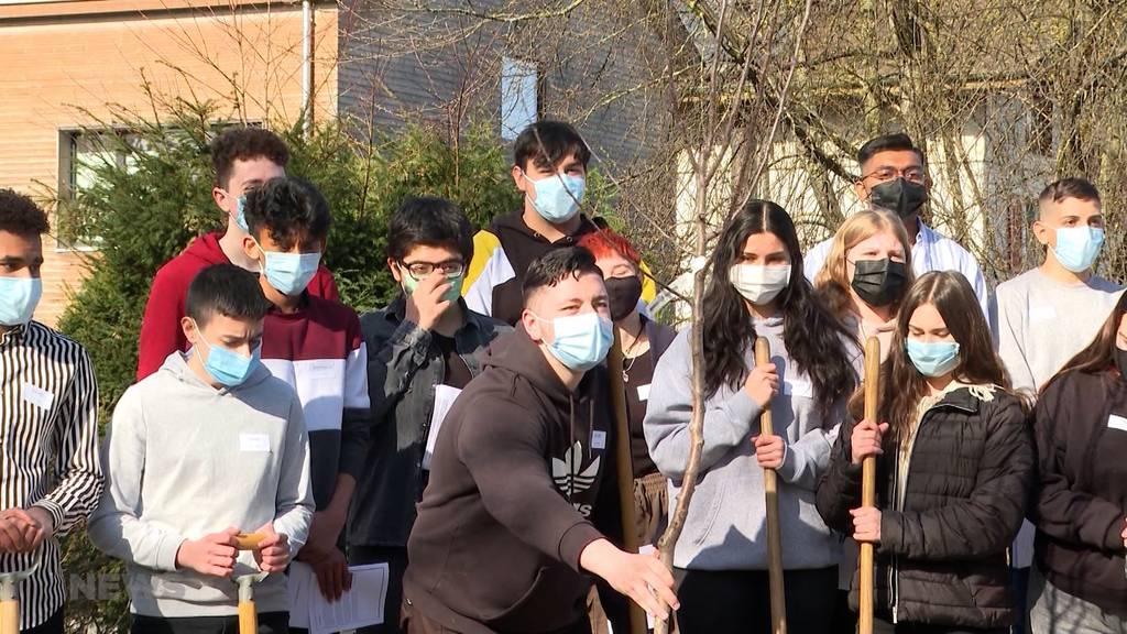1 Jahr nach erstem Lockdown: So beeinflusste Fernunterricht die Schüler