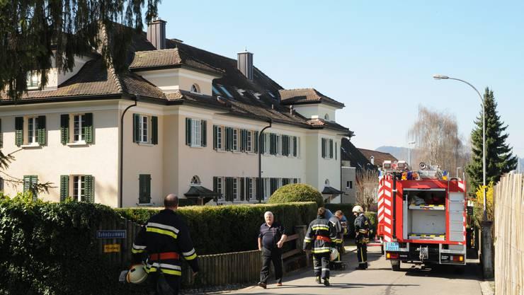 Die Feuerwehr konnte den Brand noch im Anfangsstadium löschen