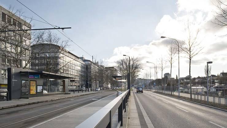 Die Schrebergärten entlang der Thurgauerstrasse (im Bild: Tramhaltestelle Oerlikerhus) sollen einem neuen Quartier weichen.