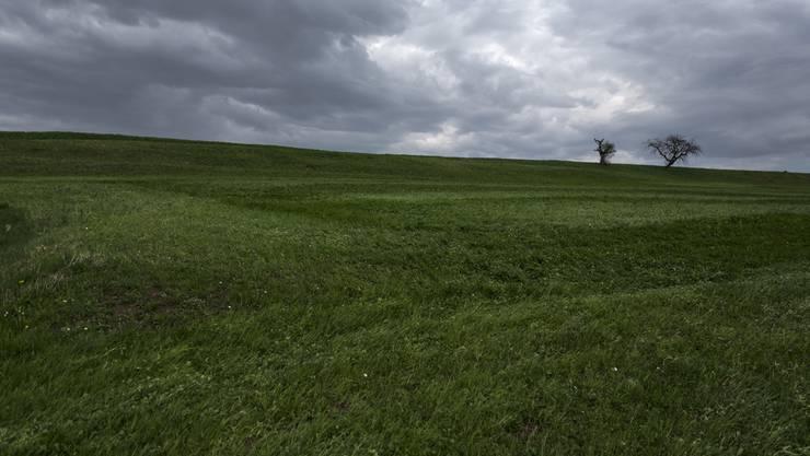 Der Ursprung für die Strahlenwolke dürfte in Norwegen liegen. (Symbolbild)