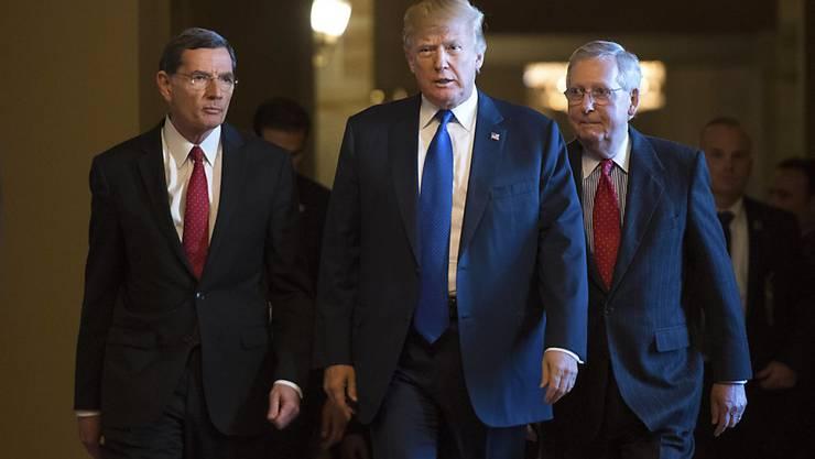 US-Präsident Donald Trump (M) mit dem republikanischen Mehrheitsführer im Senat, Mitch McConnell (r) und dem Ausschussvorsitzenden John Barrasso