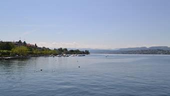 Der Inder war 100 Meter vom Ufer entfernt von einem Pedalo ins Wasser gestiegen und um das Boot herumgeschwommen. Dann ging er unter. (Archiv)
