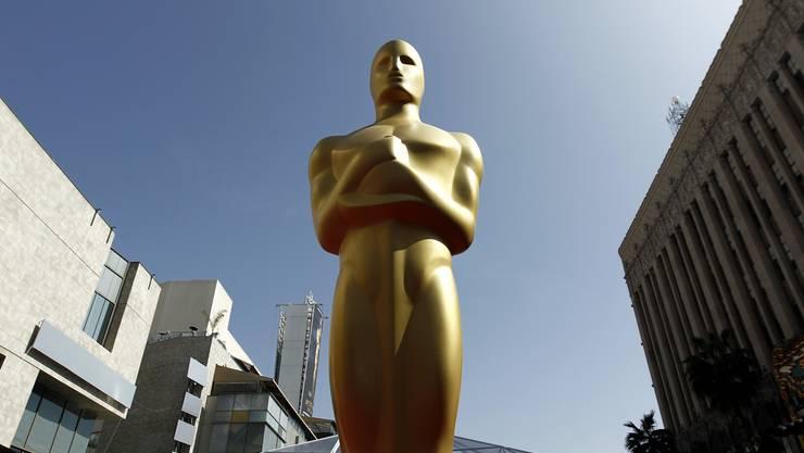 Die Regionalsport-Oscars gehen an:
