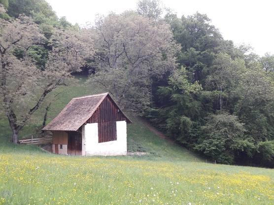 Saniert: Auch die Feldscheune Unter Wil in Waldenburg erstrahlt dank dem Einsatz des Vereins Feldscheunen wieder in altem Glanz.
