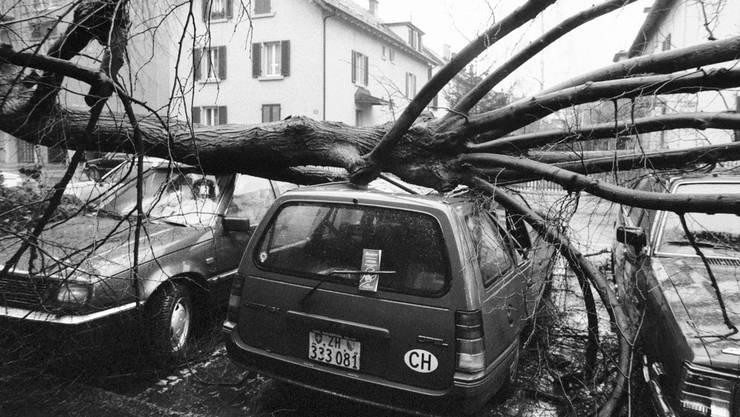 Vivian richtete 1990 erheblichen Schaden an.