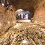 Im März wurde bekannt, dass man im Bergwerk Herznach einen rund 160 Millionen Jahre alten Meeresboden entdeckt hat, der mit Hunderten von Ammoniten übersät ist. Nun soll der aussergewöhnliche Fund in einem Kurzfilm zu neuem Leben erweckt werden.