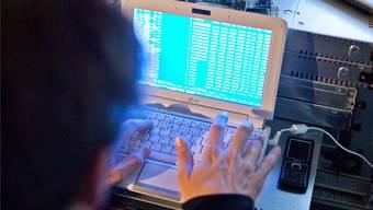 Hacker haben Wahlhilfeseiten in den Niederlanden angegriffen.