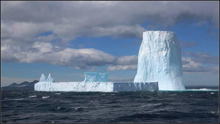 Viele Eisberge in der Antarktis.