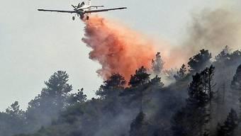 Die Feuerwehrleute kämfpen gegen die Flammen