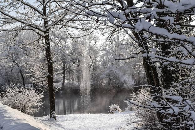 Die Reussebene bei Werd wurde zum Märchenland.