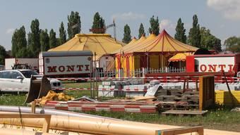 Der Circus Monti richtet sich am Donnerstag auf der Amphiwiese ein.CM