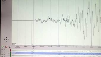 Beim Erdbeben in der Provinz Buschehr gab es Tote (Symbolbild)