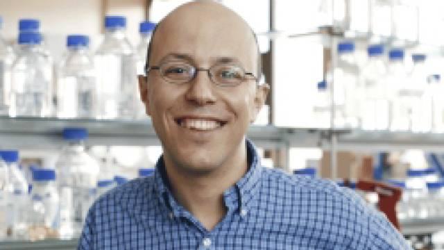 Der Krebsforscher Mohamed Bentires-Alj (Bild: FMI)