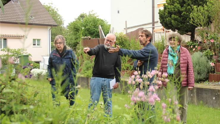 Naturgärtner Franz Weber (Zweiter von rechts) zeigt Bruno Breitschmid, welche Pflanzen heimisch sind. Die kostenlosen Gartenberatungen organisieren Andrea Fuchs (rechts) und Marianne Keusch vom Natur- und Vogelschutzverein.