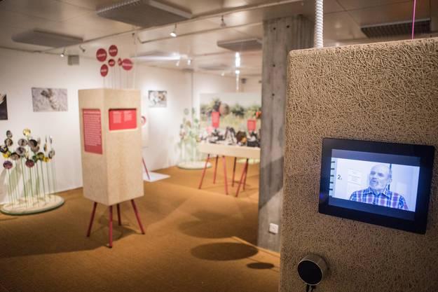 Die Ausstellung des Bündner Naturmuseums ist multimedial und interaktiv gestaltet - mit Hör- und Bildstationen