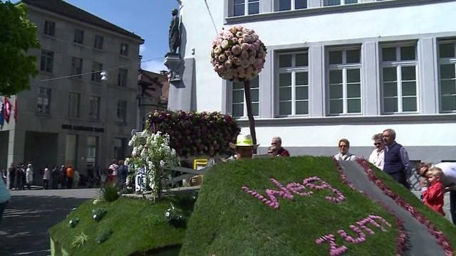 Blumenmeer in Zofingen