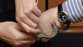 Der stellvertretende Polizeichef von Lyon, Michel Neyret, wurde festgenommen (Symbolbild)