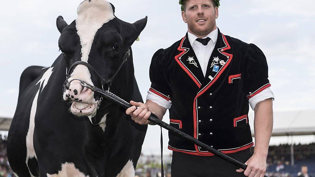 Der frischgebackene Schwingerkönig Matthias Glarner freut sich neben dem Siegermuni über seinen Triumph.