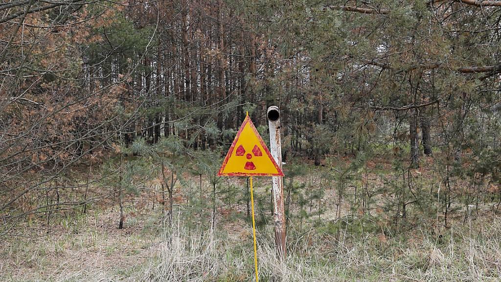 Die Sperrzone gilt bis heute: Nach der Explosion im ukrainischen Atomkraftwerk Tschernobyl 1986 wurde ein Gebiet weit rund um die Anlage radioaktiv verseucht. (Archivbild)