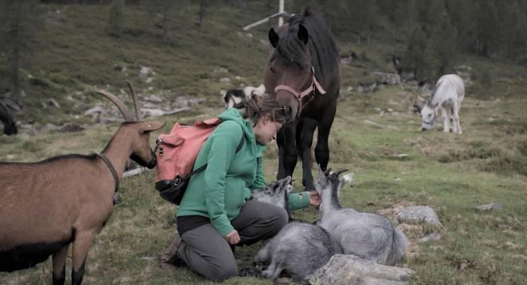 Auch Evas Liebe zu den Tieren ist in «Kühe auf dem Dach» ein Thema. Und das Leben auf der Alp das richtige, um ein Kind zu haben.