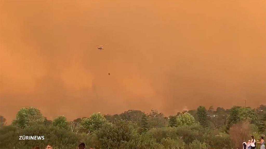 Australien: Buschbrände erreichen neuen Höhepunkt