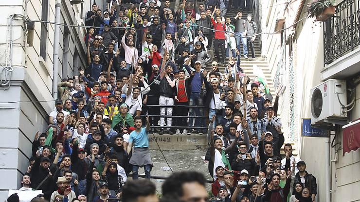 Studenten in Algier protestieren weiterhin gegen eine fünfte Amtszeit von Präsident Bouteflika. Unterstützung bekamen die Studenten von Passanten und hupenden Autofahrern.