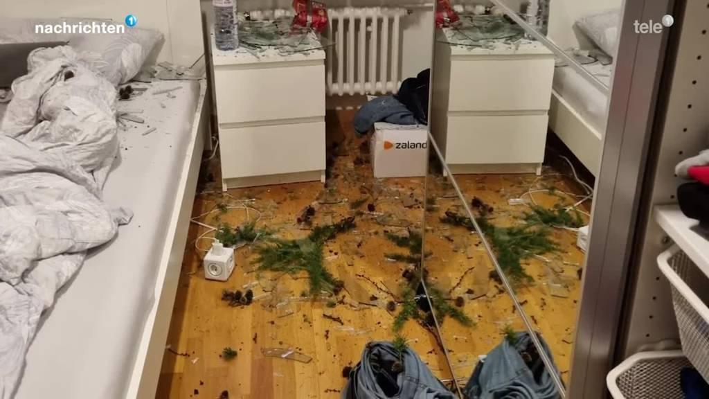 Unwetterschäden: Verhagelte Ernte und Baumsturz auf Wohnhaus