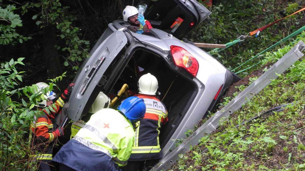 Das Gehölz bremste den abgedrifteten Wagen: Der 73-jährige Lenker wurde eingeklemmt und musste von der Feuerwehr geborgen werden.
