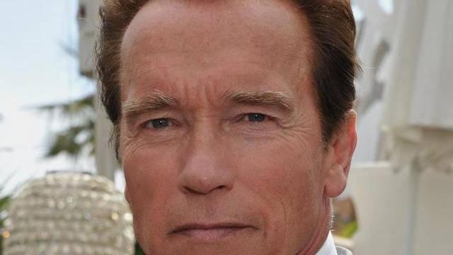 Weitere Vorwürfe gegen Schwarzenegger (Archiv)