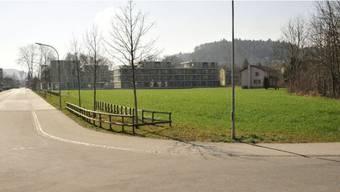 Im Vordergrund liegt das Baufeld 8; dahinter, vor der Wohnsiedlung auf Baufeld 4, schliesst das Baufeld 6 an.