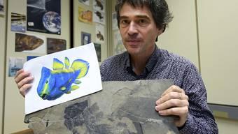 Der Genfer Paläontologe Lionel Cavin präsentiert den Quastenflosser-Fossil-Fund.