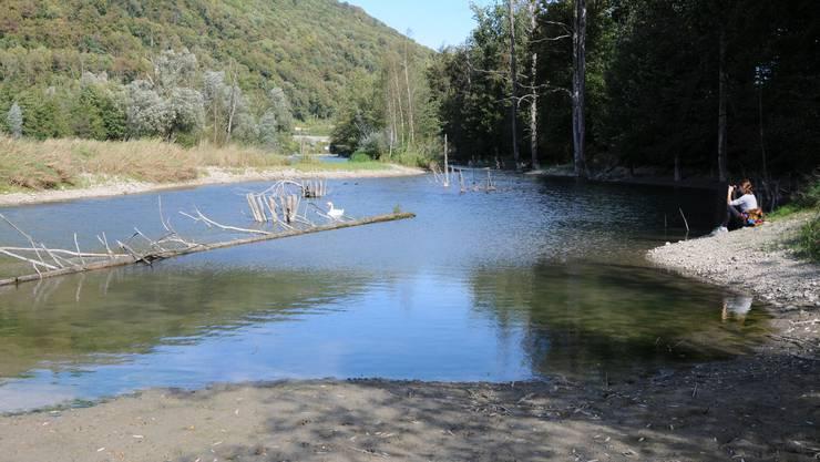 Die Aare führt in Murgenthal derzeit viel weniger Wasser als in den vergangenen Jahren im Herbst.